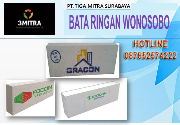 Jual Bata_Ringan_Citicon